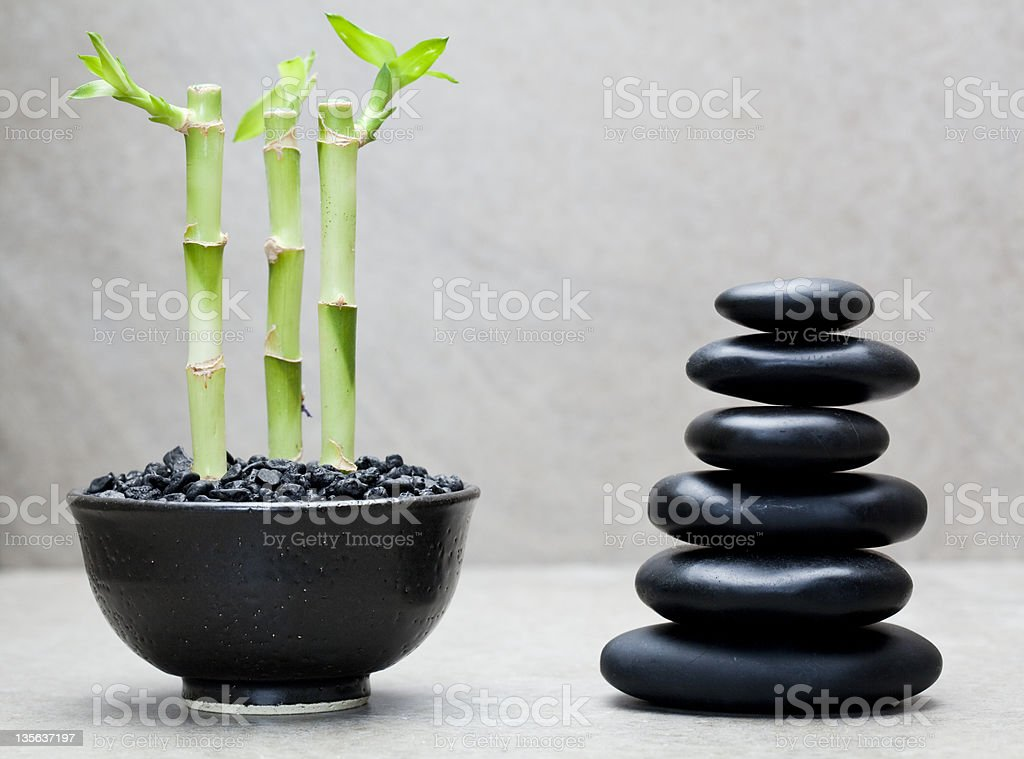three lucky bamboos beside stack of black massage stones royalty-free stock photo