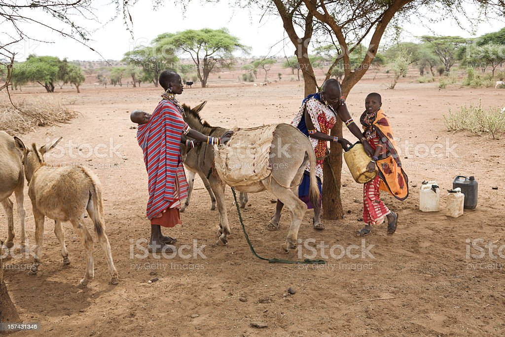 Three masai women loading donkey with water cans royalty-free stock photo