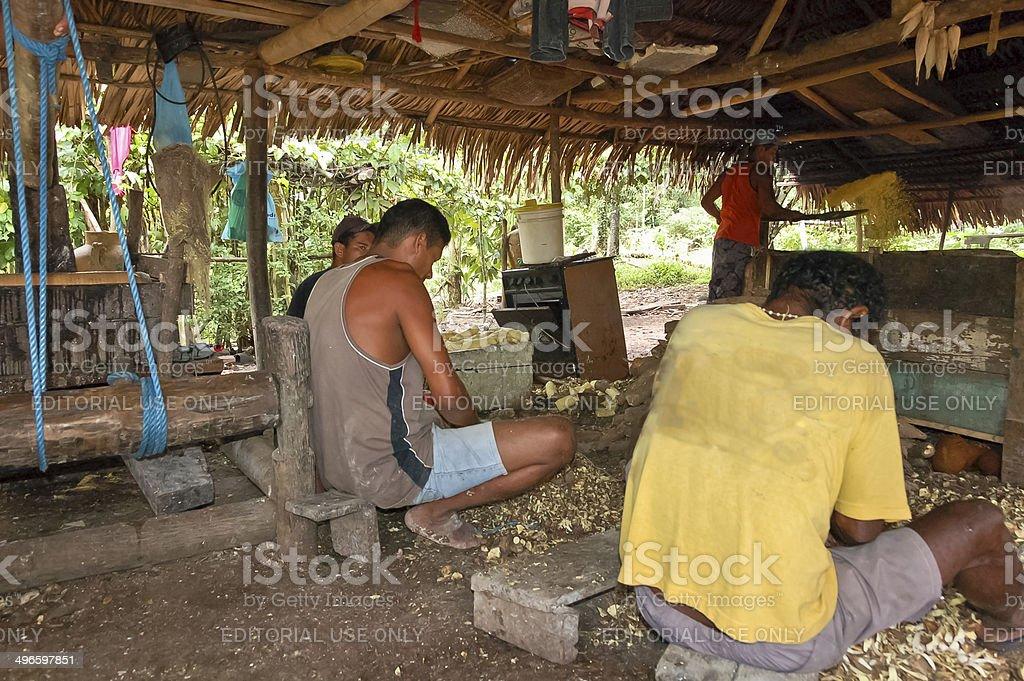 Three men peeling and one tossing manioc stock photo