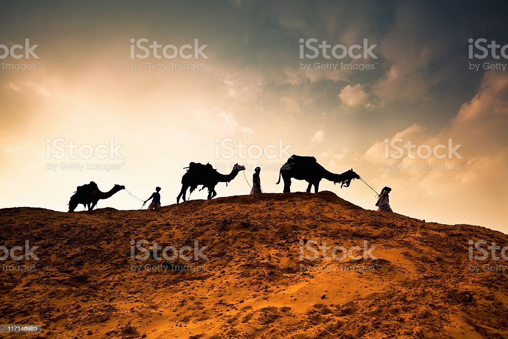 Three Men with Camels walking through Desert stock photo