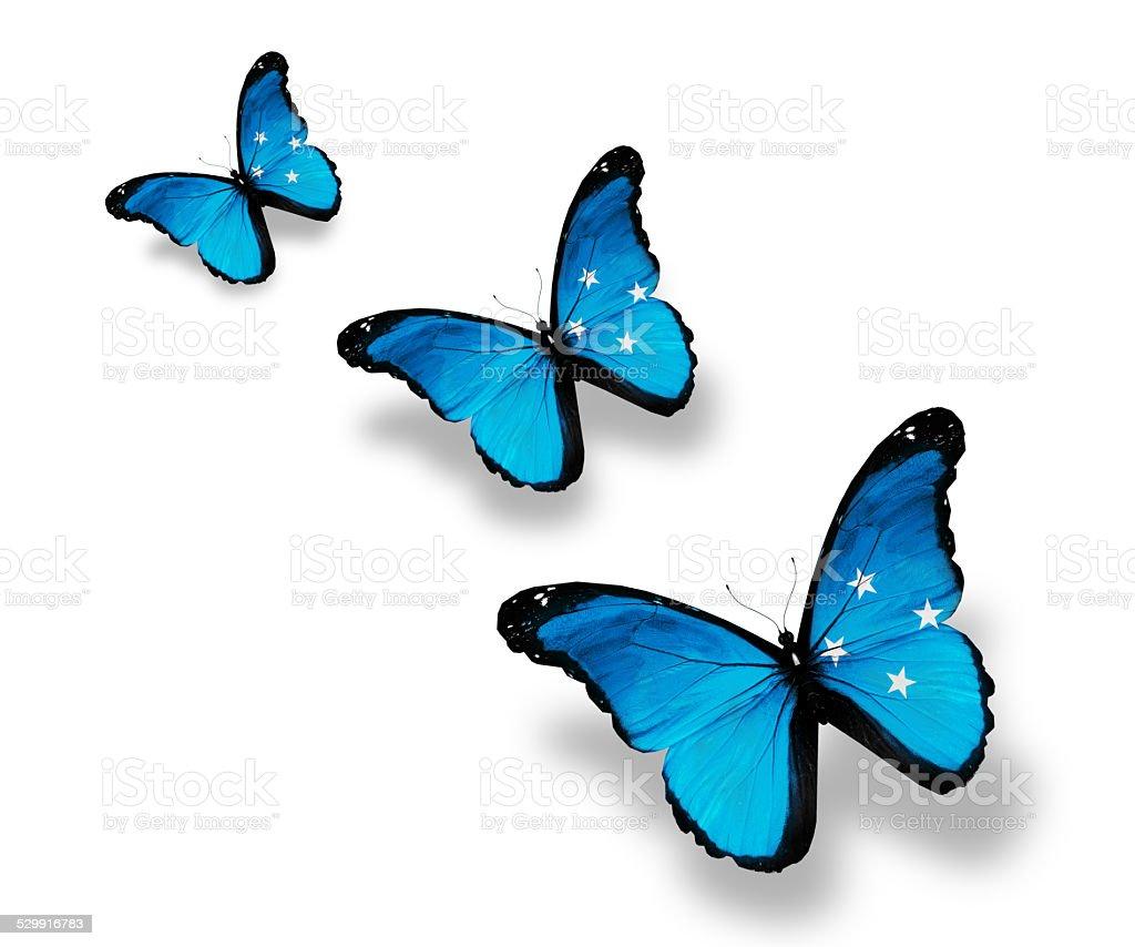 Three Micronesia flag butterflies, isolated on white stock photo
