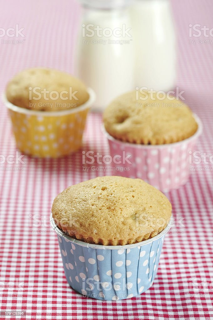 three muffins in colorful muffin royalty-free stock photo
