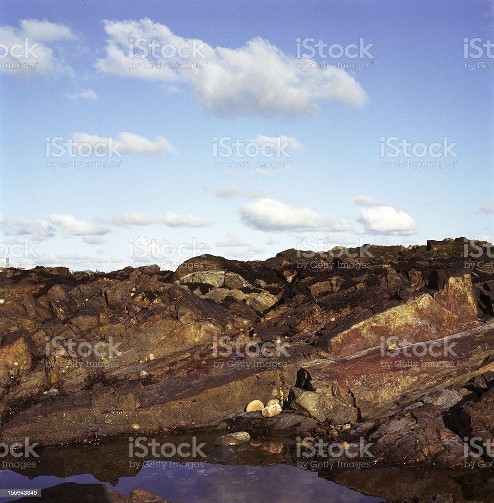 Three nature elements of Scotland royalty-free stock photo