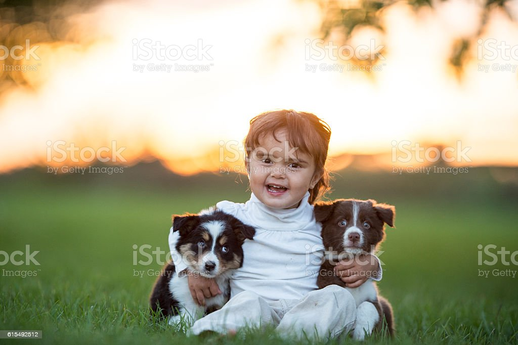 Three New Friends stock photo