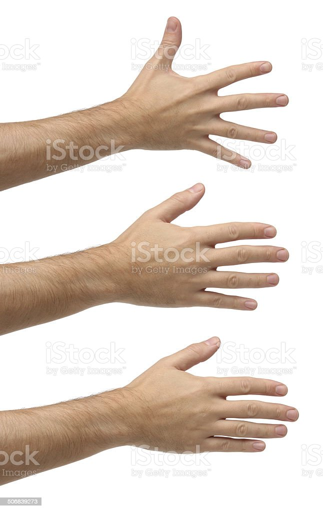 Three open hands on different positions. Isolated stock photo