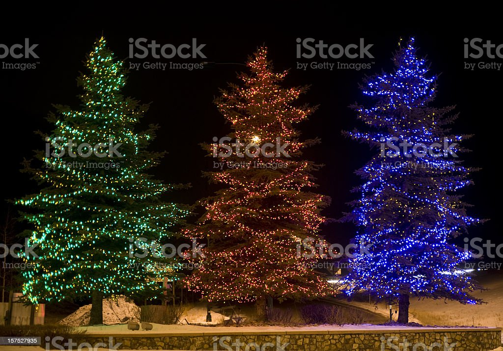 Three Outdoor Lighted Christmas Trees royalty-free stock photo