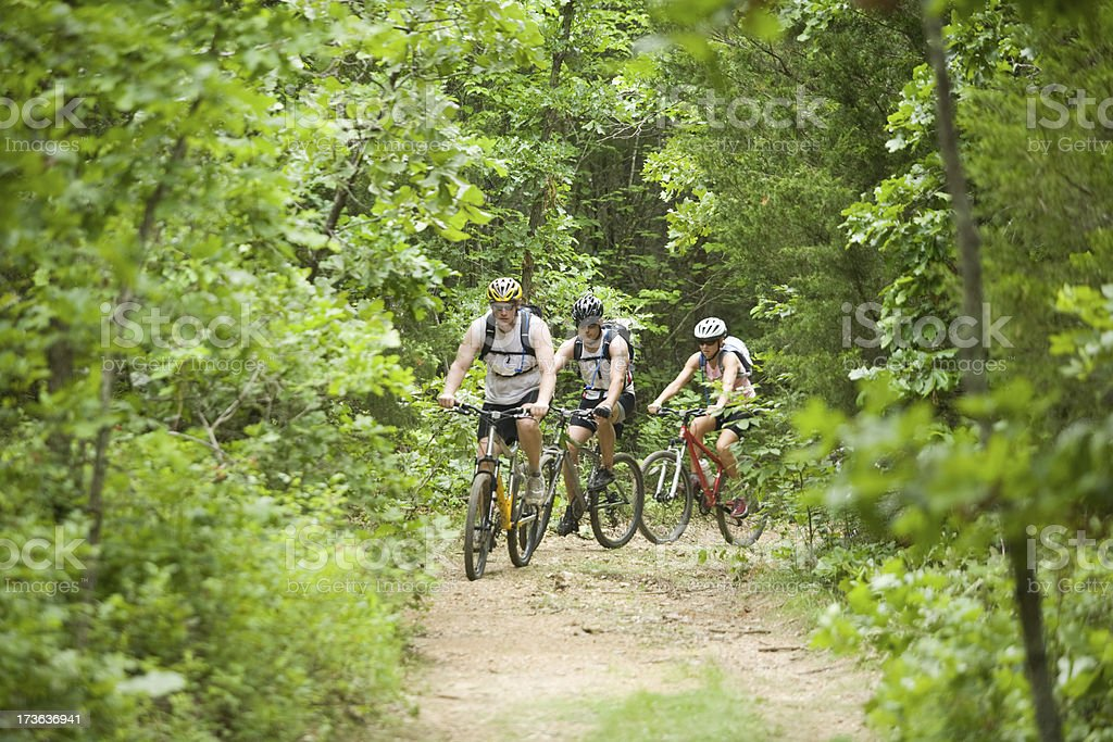 Three people mountain biking in the forest stock photo