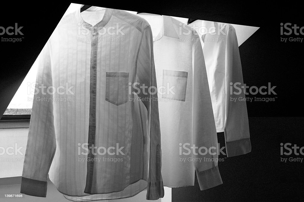 three royalty-free stock photo