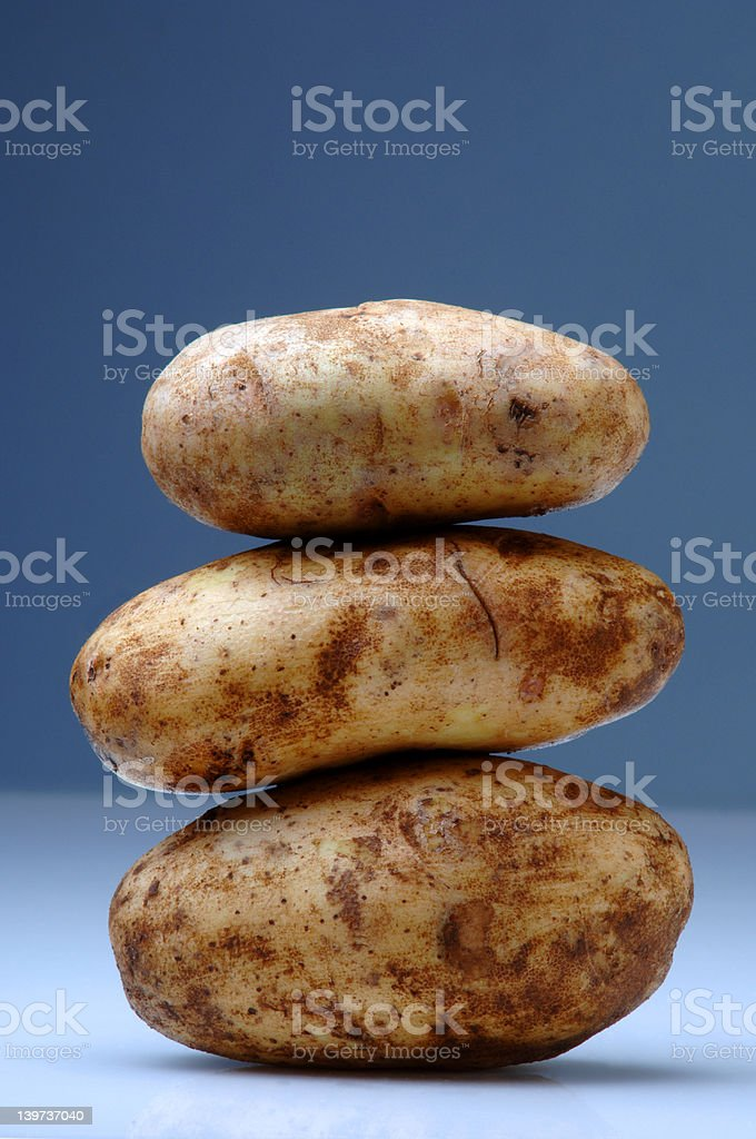 Three potatoes royalty-free stock photo