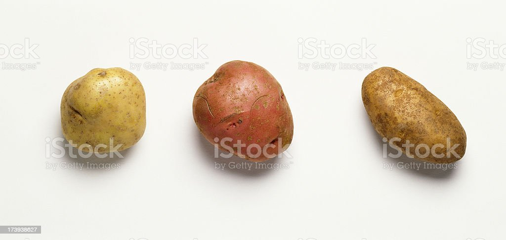 Three potatoes royalty-free stock photo