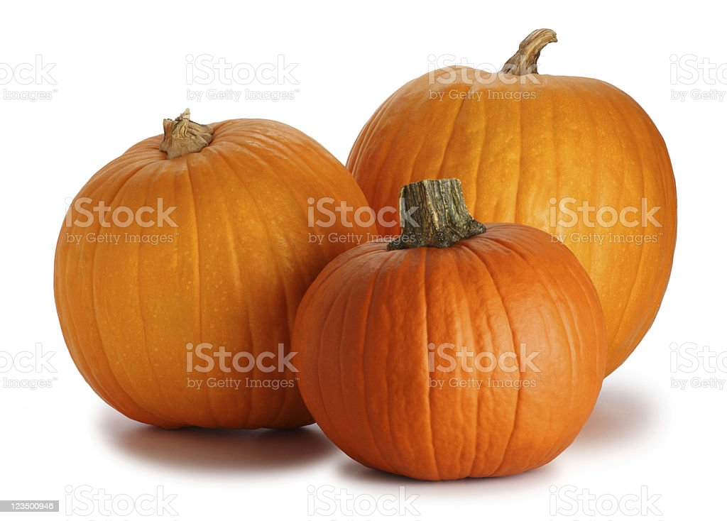 Three Pumpkins Isolated on White stock photo