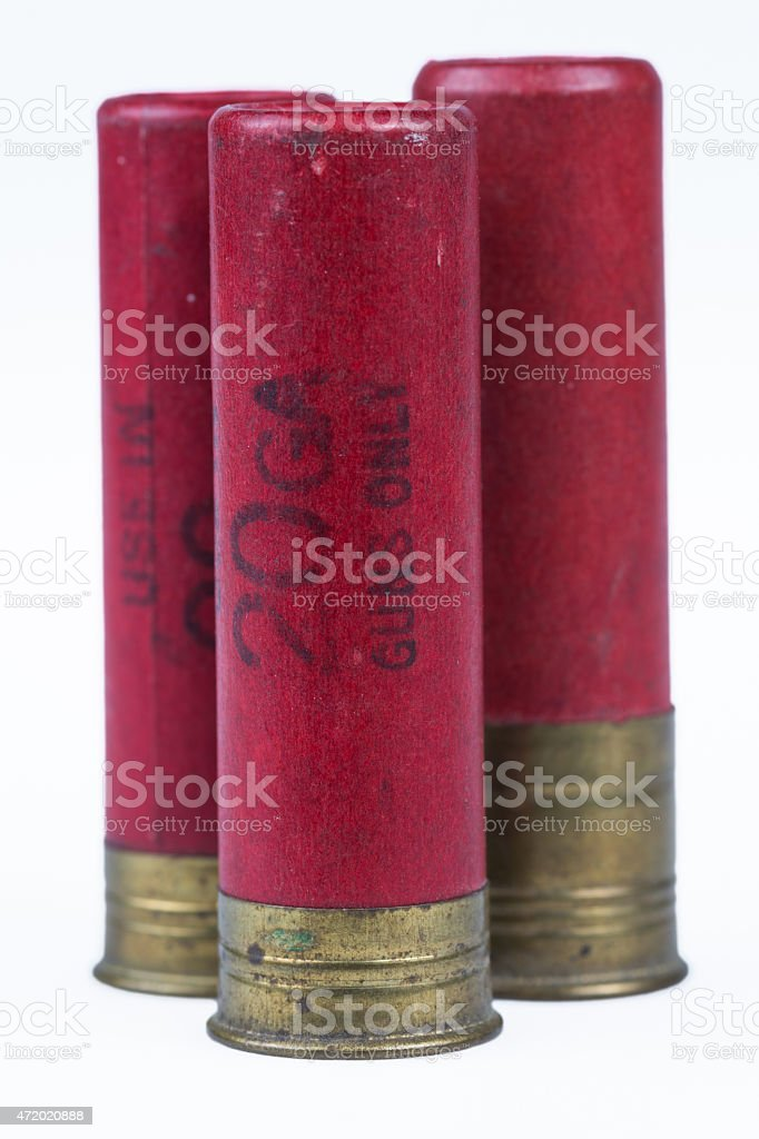 Three red 20 gauge shotgun shells isolated on white stock photo