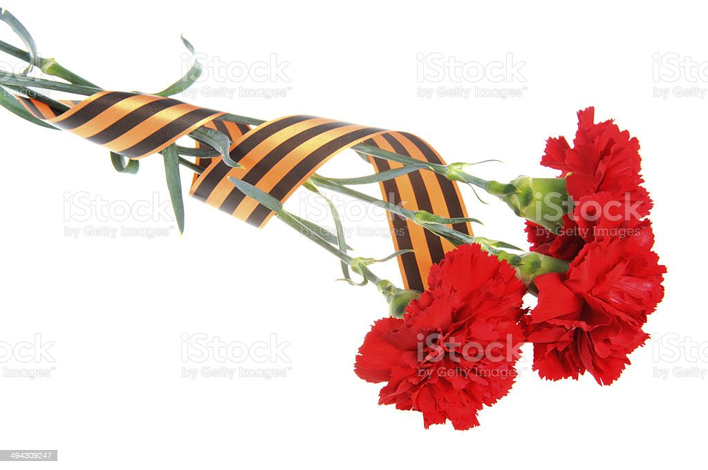 Three red carnations tied with Saint George ribbon isolated stock photo