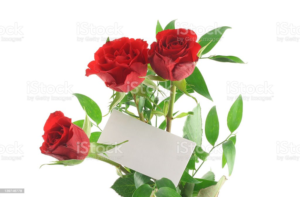 three red roses with blank love note stock photo