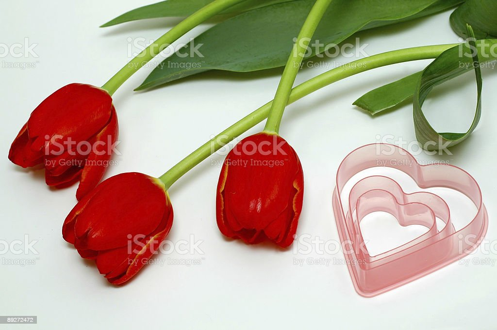 Three red tulips and pink hearts royalty-free stock photo