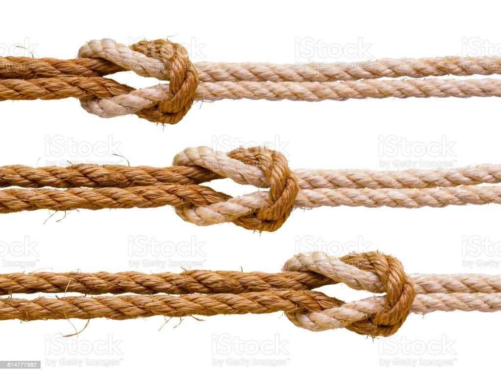 Three reef knots. stock photo