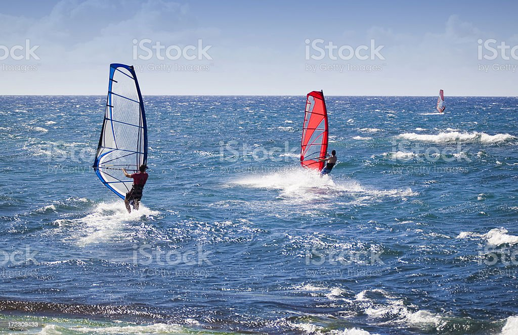Three Sailboarders stock photo