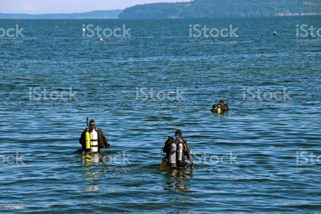 Three scuba divers wading into Puget Sound stock photo