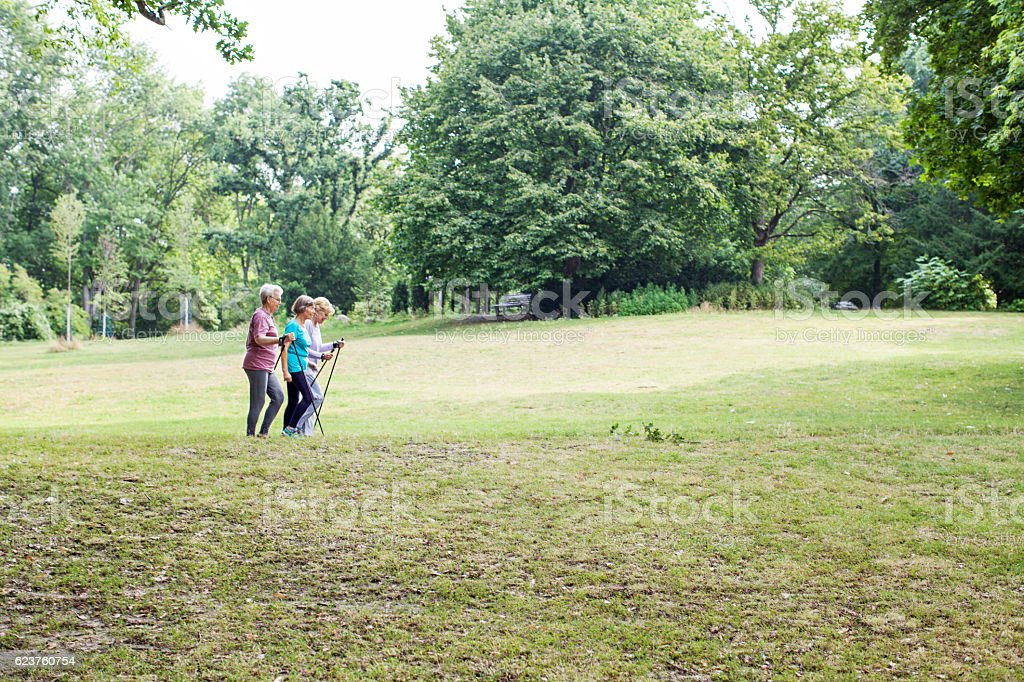 Three senior woman walking in the park stock photo