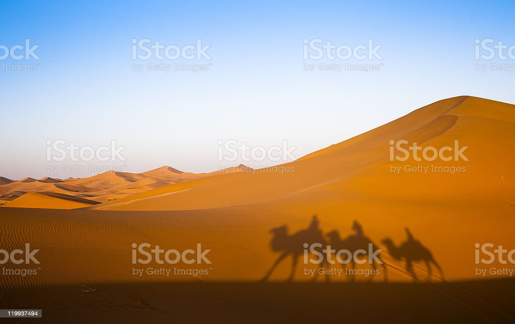 Three silhouettes of men on camels going through the desert  stock photo