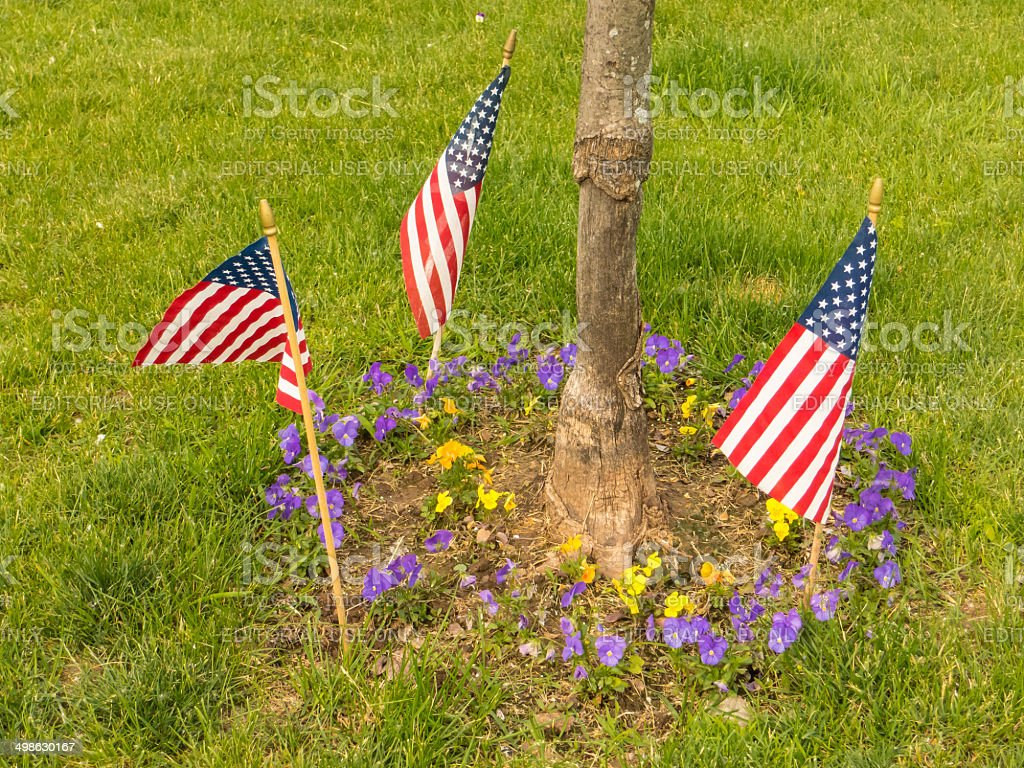 three Small American flags in the lawn stock photo