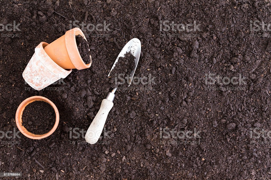 Three small clay pots beside spade in dirt stock photo