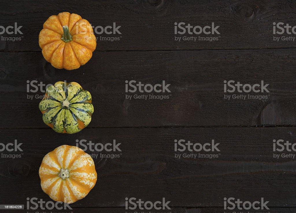 Three small pumpkins royalty-free stock photo