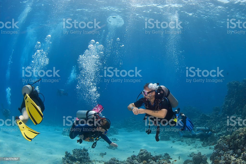Three snorkelers in crystal clear water royalty-free stock photo