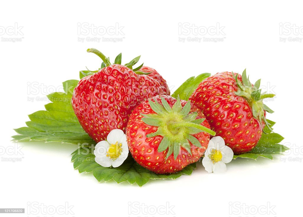 Three strawberry fruits with flowers and green leaves stock photo