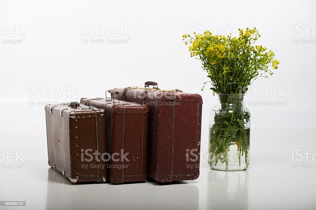 Three suitcases and flowers stock photo