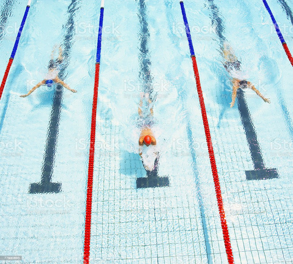 Three swimmers racing in a pool stock photo