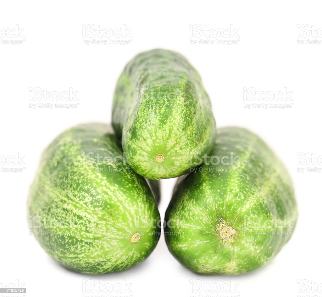 Three tails of cucumber. royalty-free stock photo