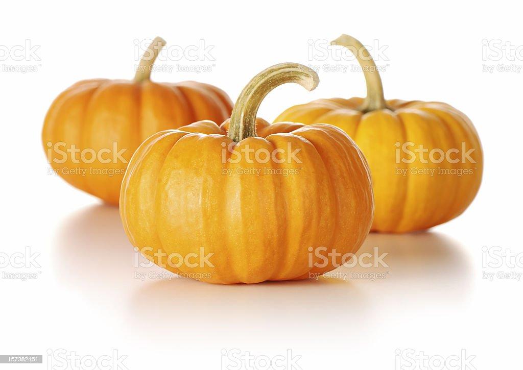 Three tiny orange pumpkins on a white background stock photo