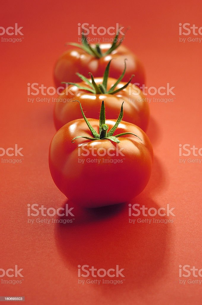 three tomatoes in a row royalty-free stock photo