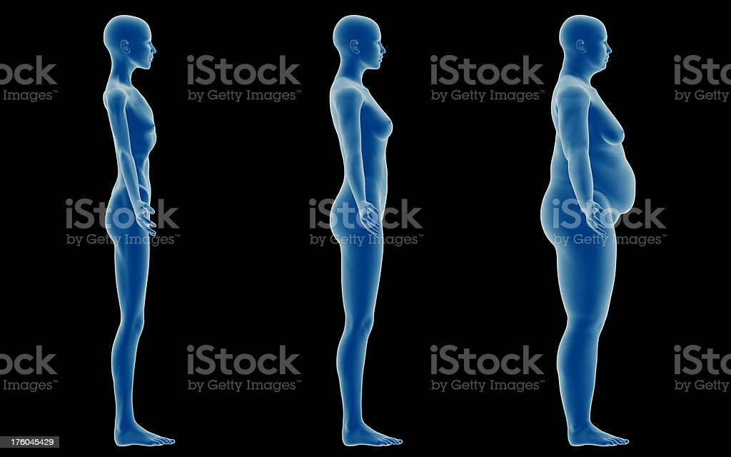 Three types of feminine bodies: emaciated, slim and overweight royalty-free stock photo