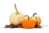 Three unique autumn pumpkins with leaves over white