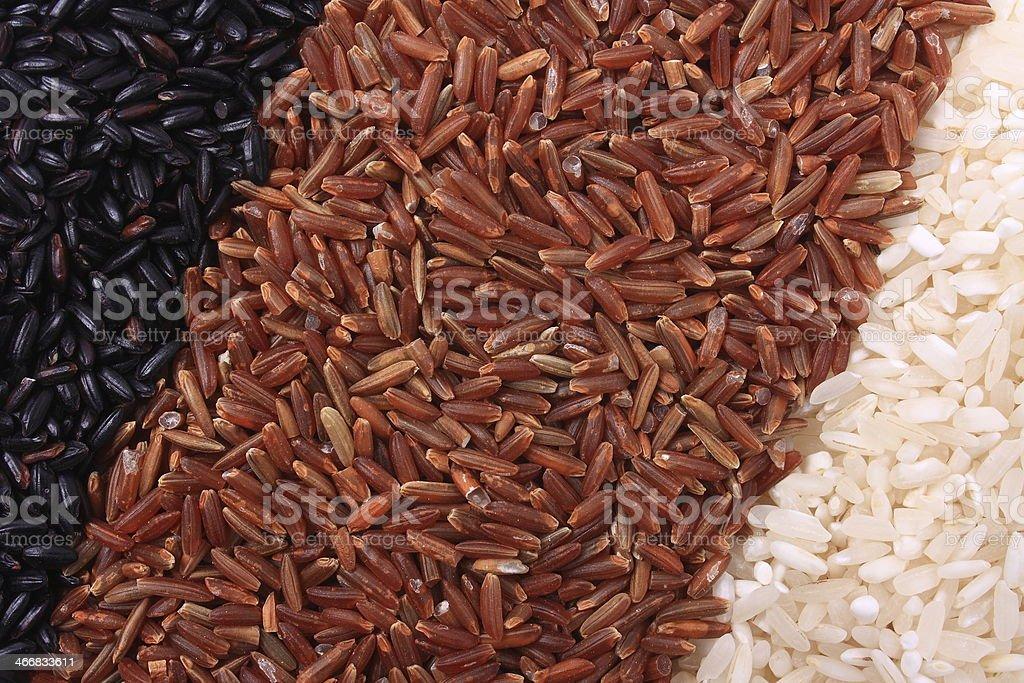Three variety of rice stock photo