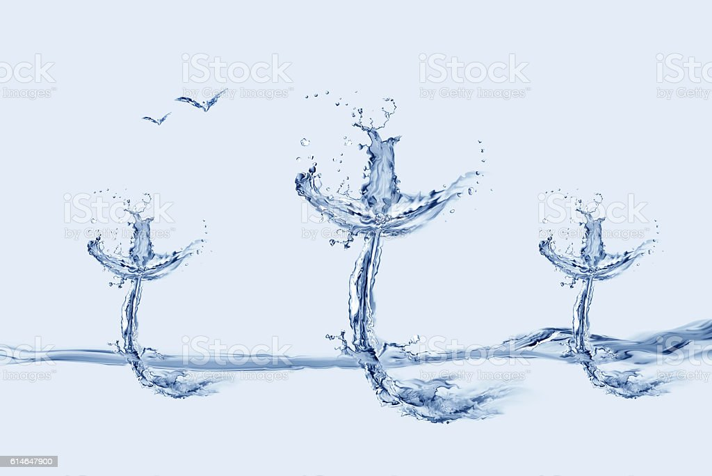 Three Water Crosses and Birds stock photo