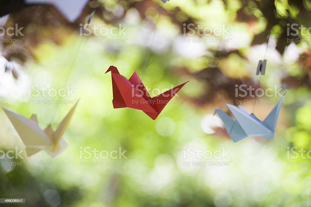Three white red and blue origami cranes hanging outdoors  stock photo