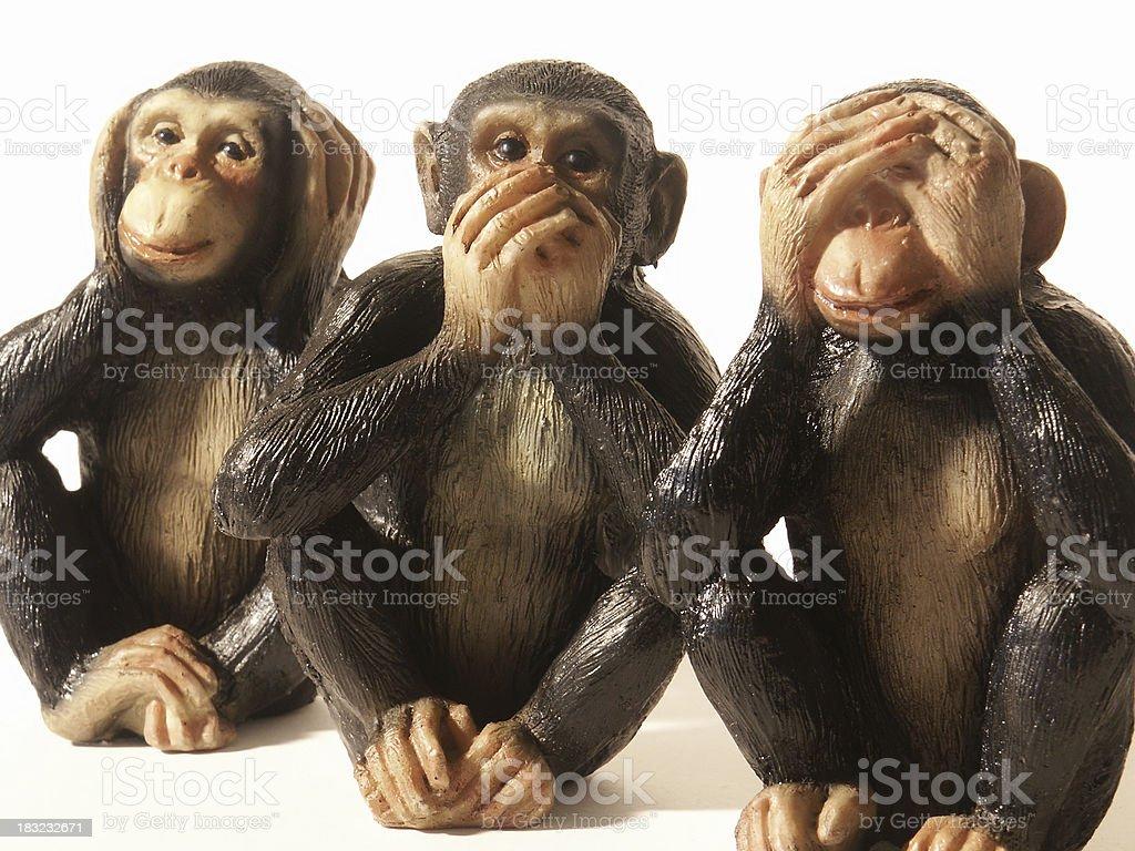 Three Wise Monkeys royalty-free stock photo