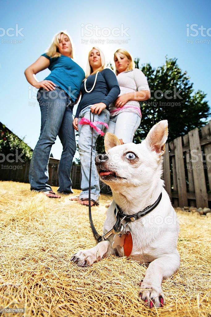 Three Women with Small Dog royalty-free stock photo
