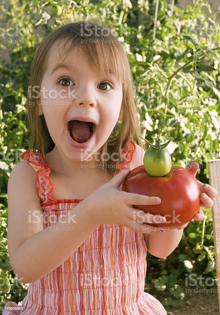 Three Year Old w/Tomatoes royalty-free stock photo