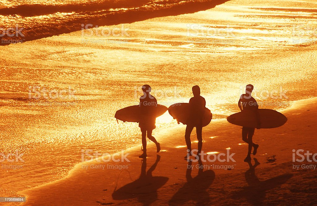Three young men carrying surfboards on a beach at sunset royalty-free stock photo