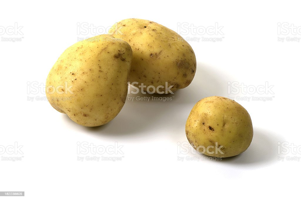 Three Yukon Gold potatoes on white background stock photo