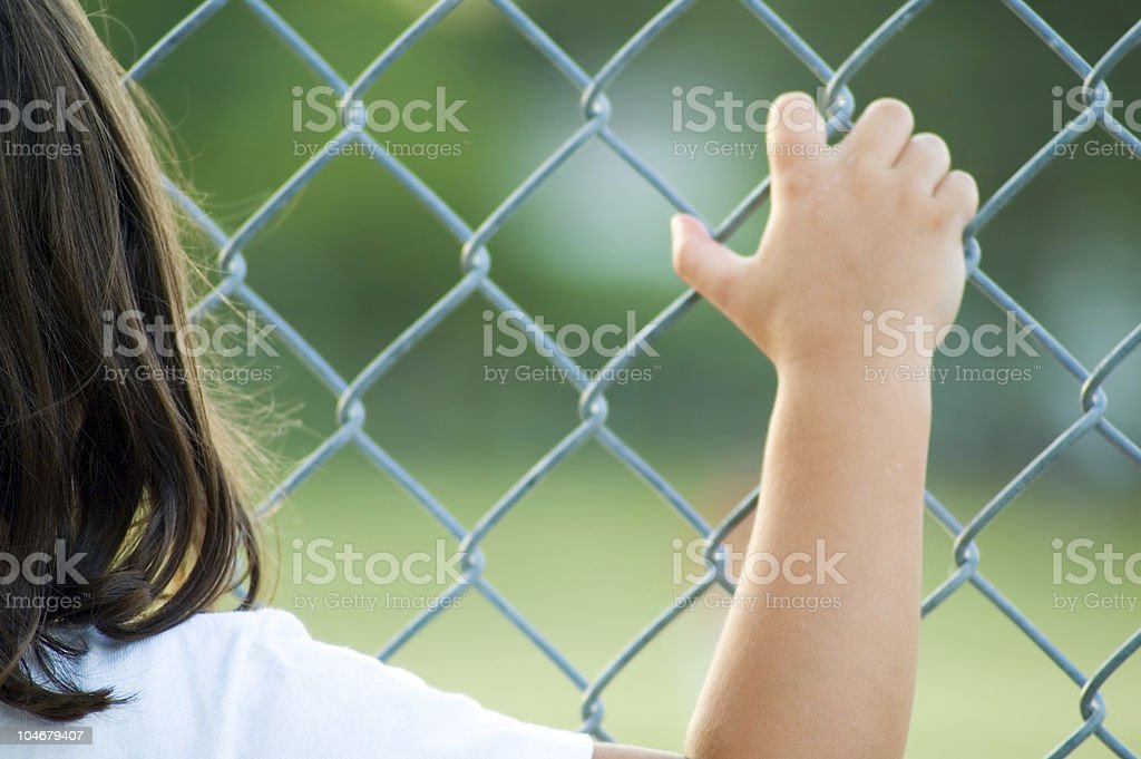Through a fence royalty-free stock photo
