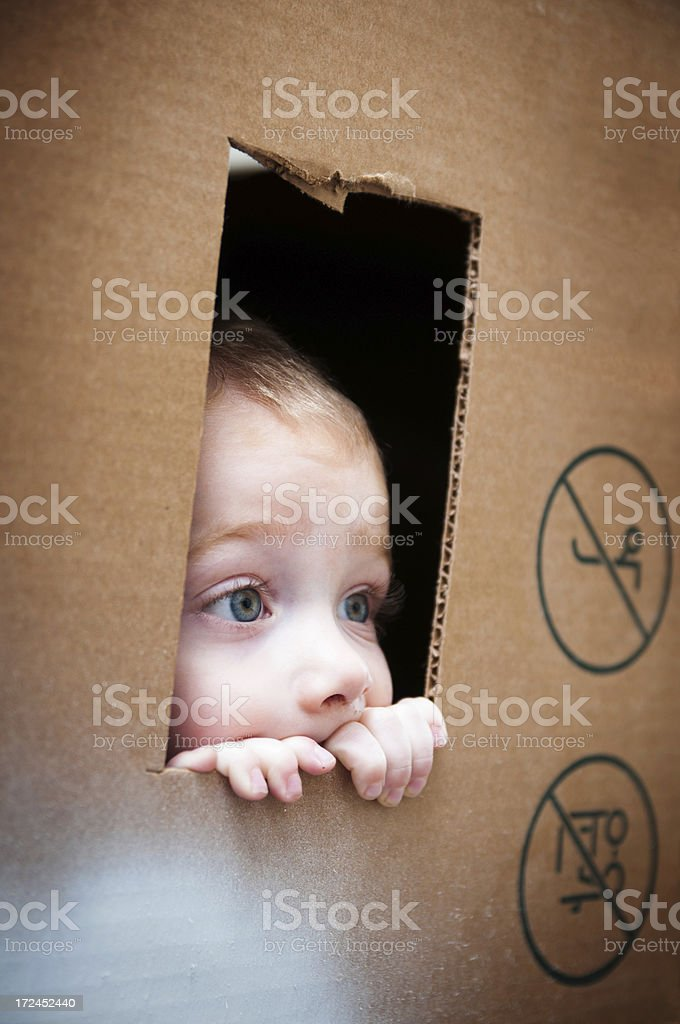 Through the box window royalty-free stock photo