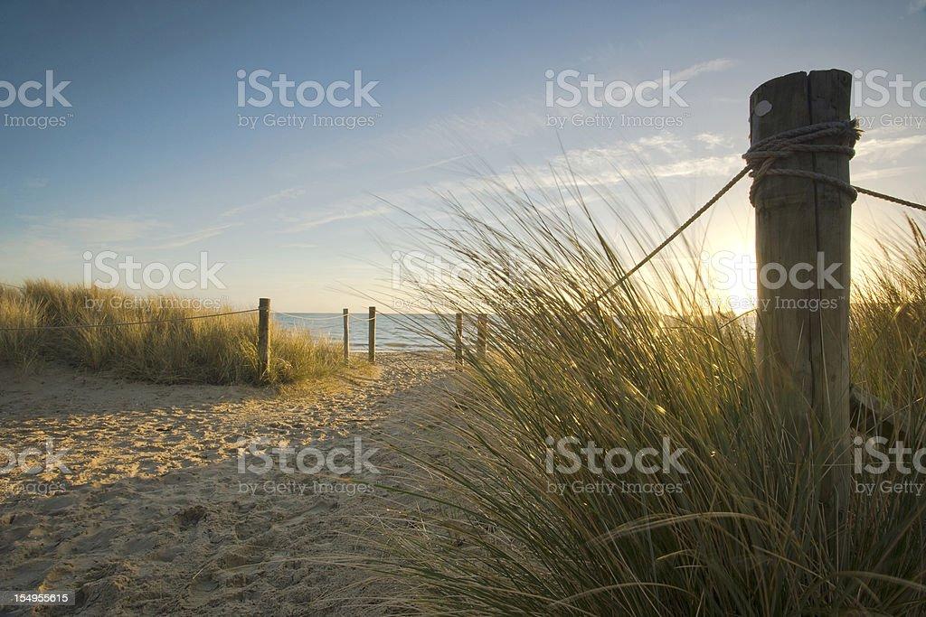 Through the dunes... stock photo