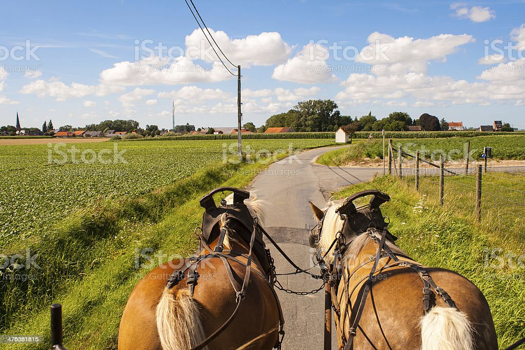 Through the flemish fields with horse and covered wagon. royalty-free stock photo