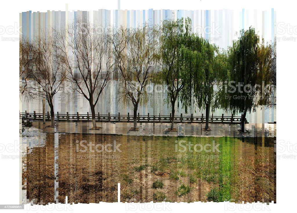 Through the four seasons stock photo