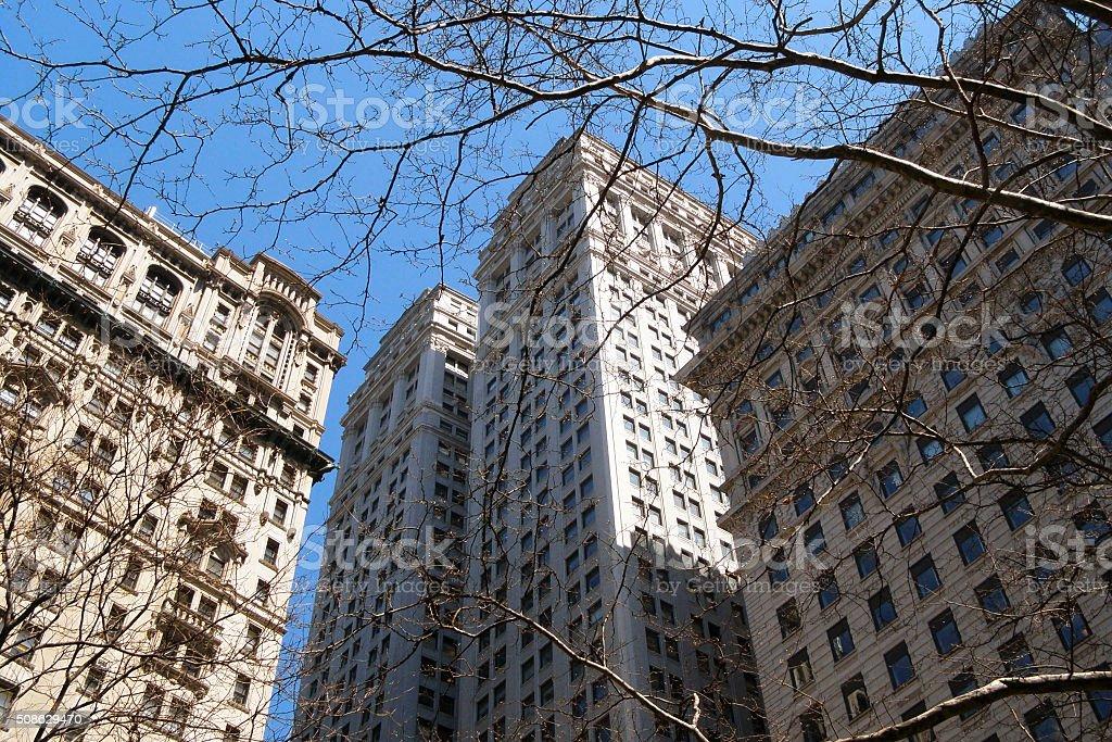NYC through trees stock photo